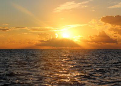 Herrlich wenn man von den ersten Sonnenstrahlen geweckt wird