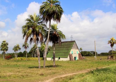 Trockenhütte für Tabak – Valle de Vinales